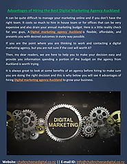 hiring the best digital marketing agency auckland