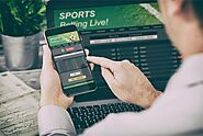 Important Key Notes for Online Sports Betting Business in 2020