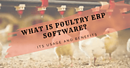 What is Poultry ERP Software? Its Usage and Benefits