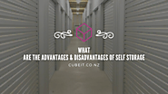 what are the advantages and disadvantages of self storage