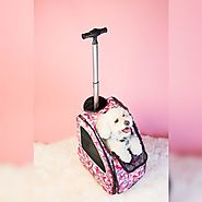 Pet Travel System for Emergency-Readiness