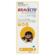 Bravecto Spot On for X-Small Dogs (2 - 4.5 kg) Yellow