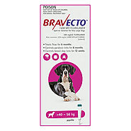 Bravecto Spot On for X-Large Dogs (40 - 56 kg) Pink