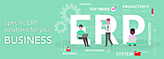 Best Custom ERP Software Development Services Company
