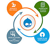 Meet Your Business Expectations By Hiring Drupal Website Development Services