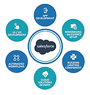 Searching The Best Salesforce Development Company In USA