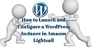 How to Launch and Configure a WordPress Instance in Amazon Lightsail?