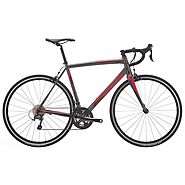 RIDLEY Fenix A Tiagra Road-Endurance Bicycle