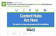 Scoop.it enables professionals and businesses to research and publish content (TheBigBazar.Find The Best Opportunitie...