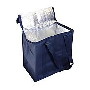 How to keep the foods safe in cooler bags?