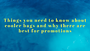 Things you need to know about cooler bags and why there are best for promotions | Mysite