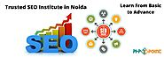 Trusted SEO Training Institute in Noida