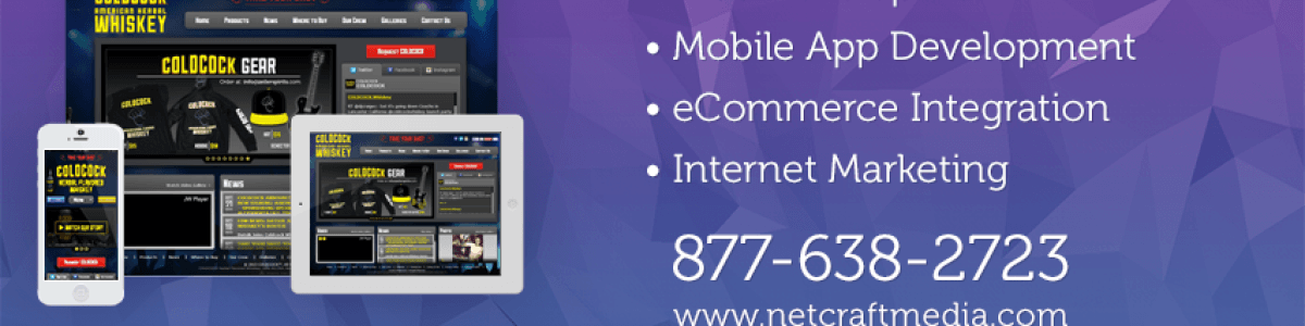 Headline for Net-Craft: Phoenix Best Website Design and App Development Company