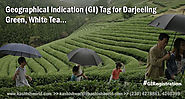 Geographical Indication (GI) Tag for Darjeeling Green, White Tea