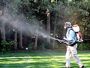 Superior Mosquito, Residential Mosquito Control Severna Park MD