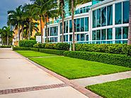Service Queen Inc, Landscaping Service Near Doral FL
