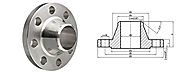 Stainless Steel Weld neck Flanges manufacturer in India - Akai Metals
