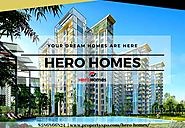 Hero Homes Offers Modern Homes for All Generations