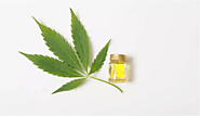 How CBD Oil Can Benefit Your Hair - Sensod - Create. Connect. Brand.