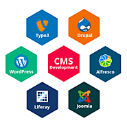 Best CMS Web Development Company in India | CMS Web Development