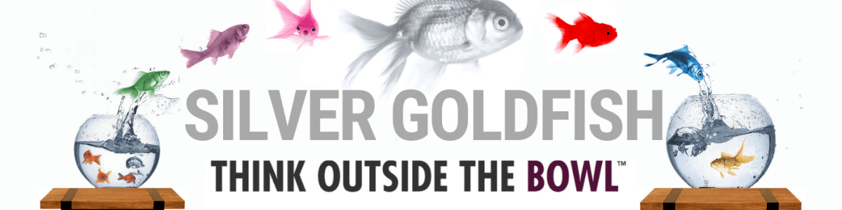 Headline for Silver Goldfish Project