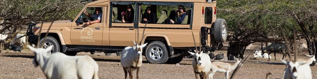 Headline for Animals that You Will Be Able to See in Sir Bani Yas Island