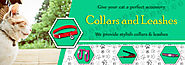 Buy Cat Collars and Leashes Products Online in India at Best Price- 4PetNeeds