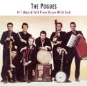 The Pogues -Fiesta - RocknRoll Goulash