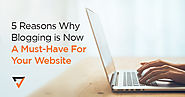 5 Reasons Why Blogging is Now A Must-Have For Your Website | Verz Design