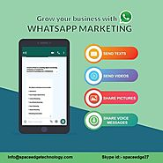Whatsapp Marketing Service Provider | Whatsapp Messaging Service in Delhi | WhatsApp Business Api Solution