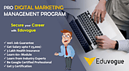 Website at https://eduvogue.com/course/jR/pro-digital-achievers-program