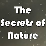 The Secrets of nature: Free nature documentaries