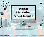 Hire Best Digital Marketing Expert in Delhi India