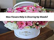 How Flowers Help in Cheering Up Moods?