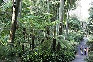 Royal Botanic Gardens, Melbourne - Wikipedia, the free encyclopedia