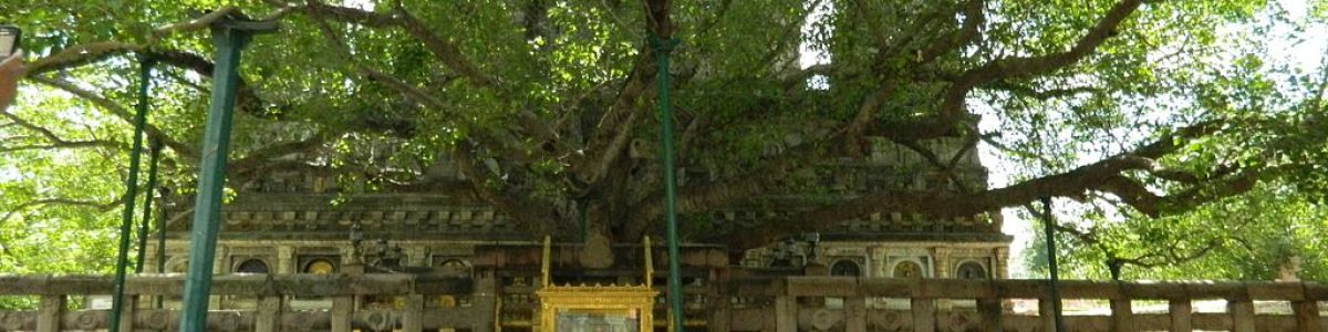 Headline for 5 Interesting Facts about Mahabodhi Temple Bodhgaya- The Mecca for Buddhism.