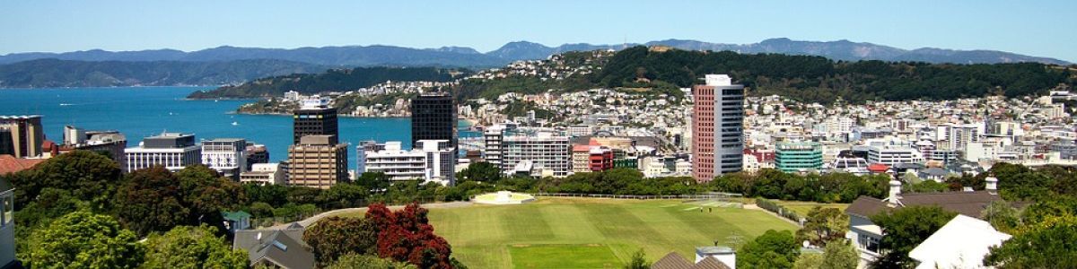 Headline for 5 Must-Dos in Wellington For the time of your life!