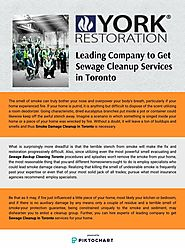 Leading Company to Get Sewage Cleanup Services in Toronto
