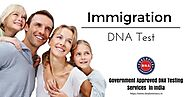 DNA Immigration Test - Prove Your Identity