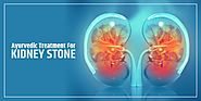 Ayurvedic Treatment For Kidney Stones – Cures All Your Kidney Problems - Shuddhi
