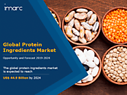 Protein Ingredients Market Size | Global Industry Report 2019-2024
