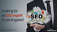 Looking for an SEO expert in Los Angeles?