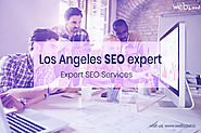 Do you need a Los Angeles SEO expert company?