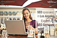 Are you looking for a good SEO specialist in Los Angeles?