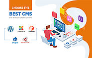 CMS Services | CMS Development Company in India