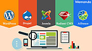 CMS Website Development Services India