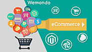 Ecommerce Website Development Services in India