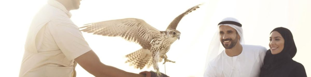 Headline for Fascinating facts about falconry in UAE – Things you need to know if intrigued by falcons