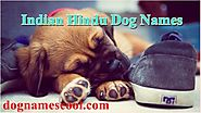 Indian Hindu Dog Names That Spell Very Well