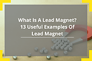 What is a lead magnet? 13 Useful Examples of Lead Magnet